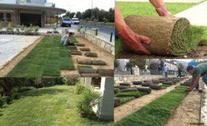 Hazır Çim - Çimseren hazır çim firması kaliteli rulo çim ve hazır çim ürünleri ile sizlere peyzaj alanlarında güzel bir görüntü sağlamanız için hizmet vermeye hazırdır.